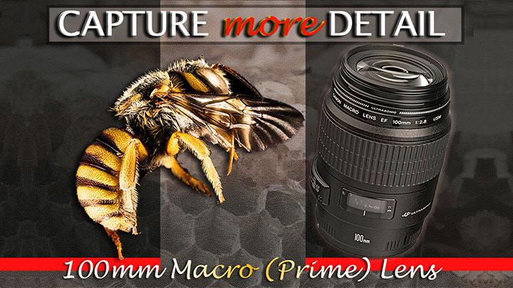 100mm Macro (Prime) Lens