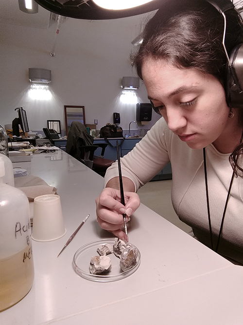 Mariana treats a set of specimens with a consolidant.