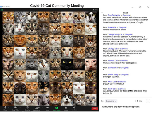 """An image of a Zoom meeting room 64 cat faces in view as though they are participating in the meeting. Each cat face is different. There is a chat on the side of the cat faces where they are discussing racism with comments like, """"Humans need to get their act together,"""" """"Down with racism!"""" and """"All creatures oft the same species are equals."""" The Zoom meeting name is """"Covid-19 Cat Community Meeting"""""""