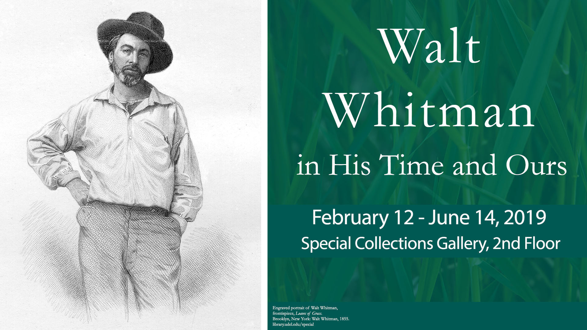 Walt Whitman: In His Time and Ours