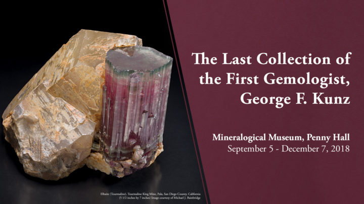 Mineralogical Museum Exhibition
